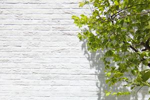 豊富な壁紙種類のイメージ